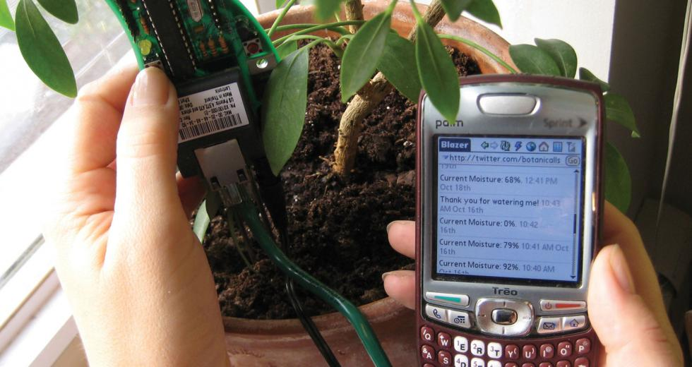 Botanicalls technology sends Twitter updates to users when plants need water.